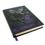 Dragon Beauty Journal B0141