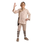 Deluxe Aang Child Costume 32-884187