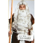 Father Time Wig HW00328