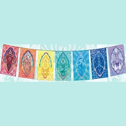 The Chakra Rainbow Series Flags